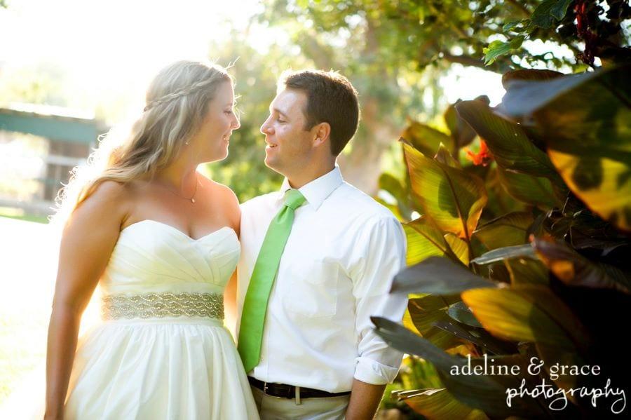 Todd Rouleau wedding